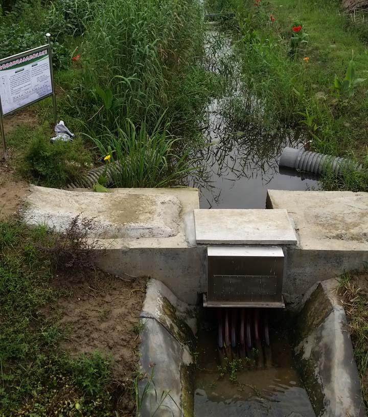 农田退水生态治理技术